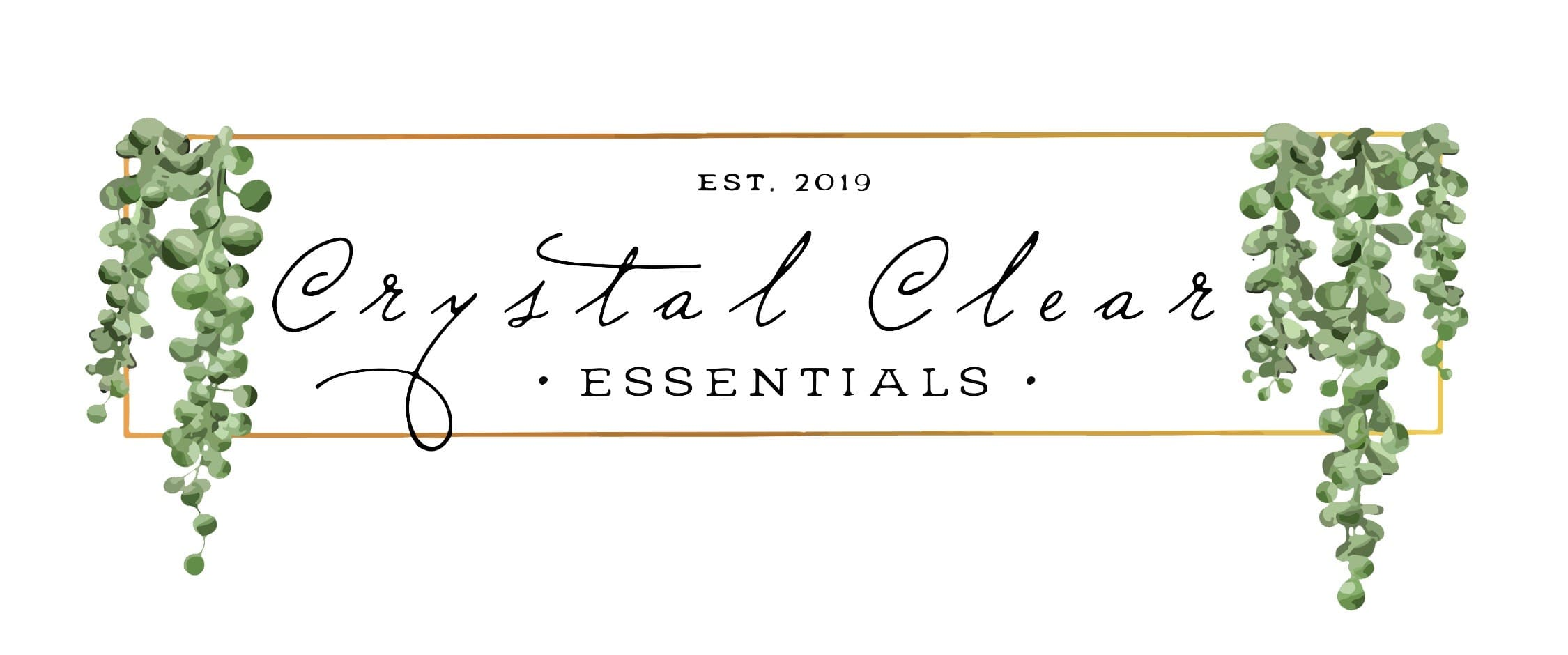 EFXfitness is proud to partner with Crystal Clear Essentials, Provide a range of wellness services including aromatherapy and wellness coaching
